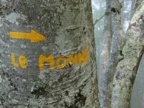 Direction les deux pics du Monnet