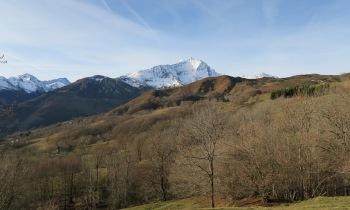 Au fond : le massif du Gabizos