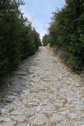 Magnifique chemin de berger ancestral au-dessus d'Aste-Béon
