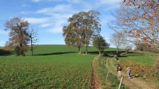 13 kms de balade sur des sentiers faciles