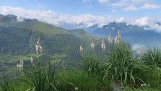 plateau de Castet depuis Soum de Picarras