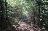 descente vers le Pont de Camps